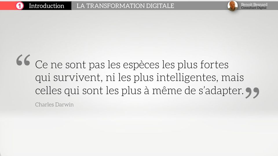 survivent, ni les plus intelligentes, mais