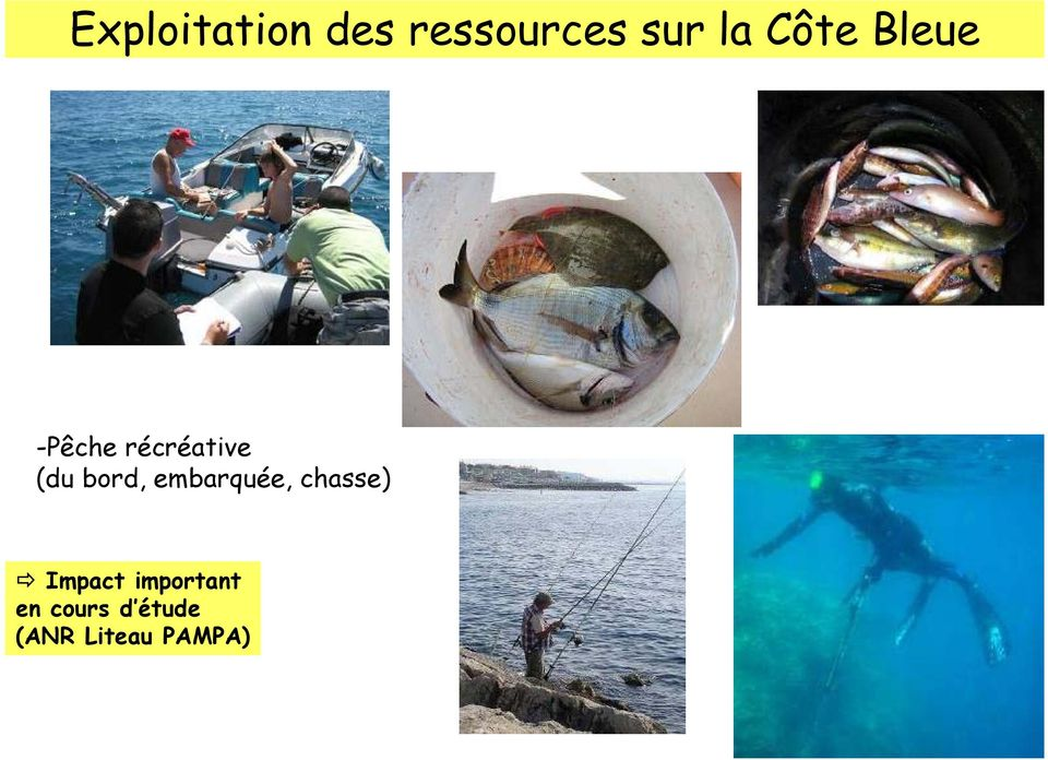 bord, embarquée, chasse) Impact