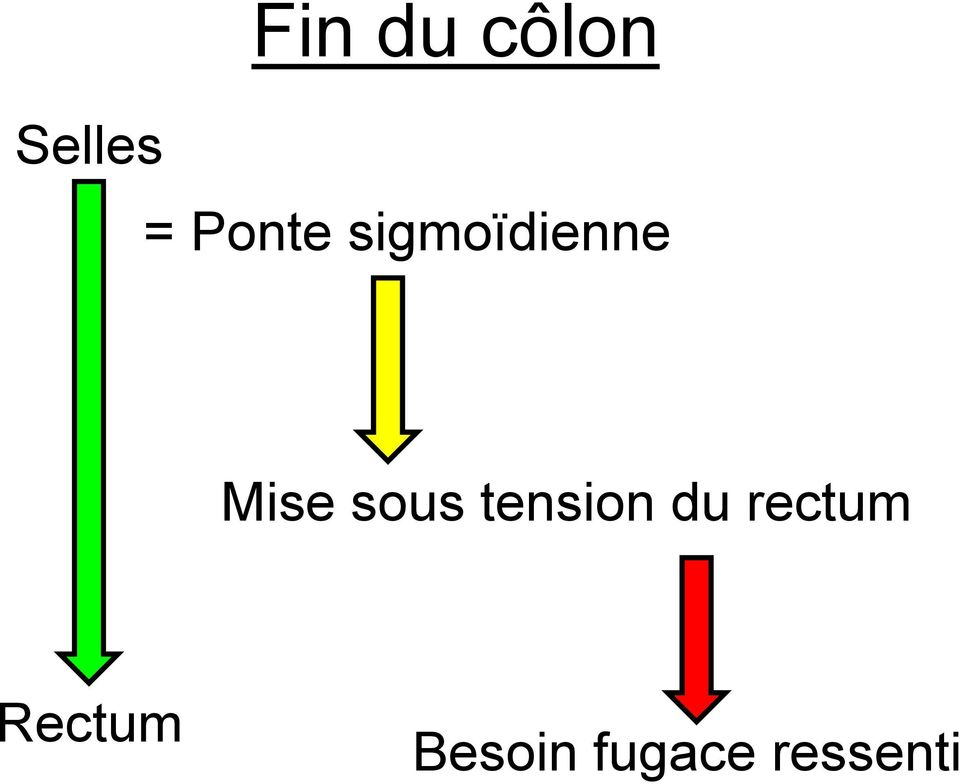 sous tension du rectum