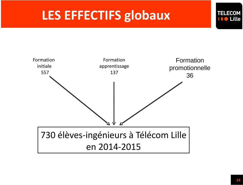 137 Formation promotionnelle 36 730