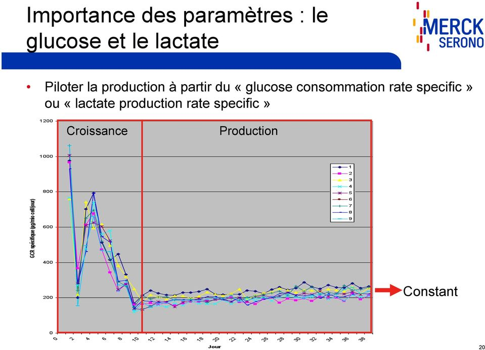 «glucose consommation rate specific» ou «lactate