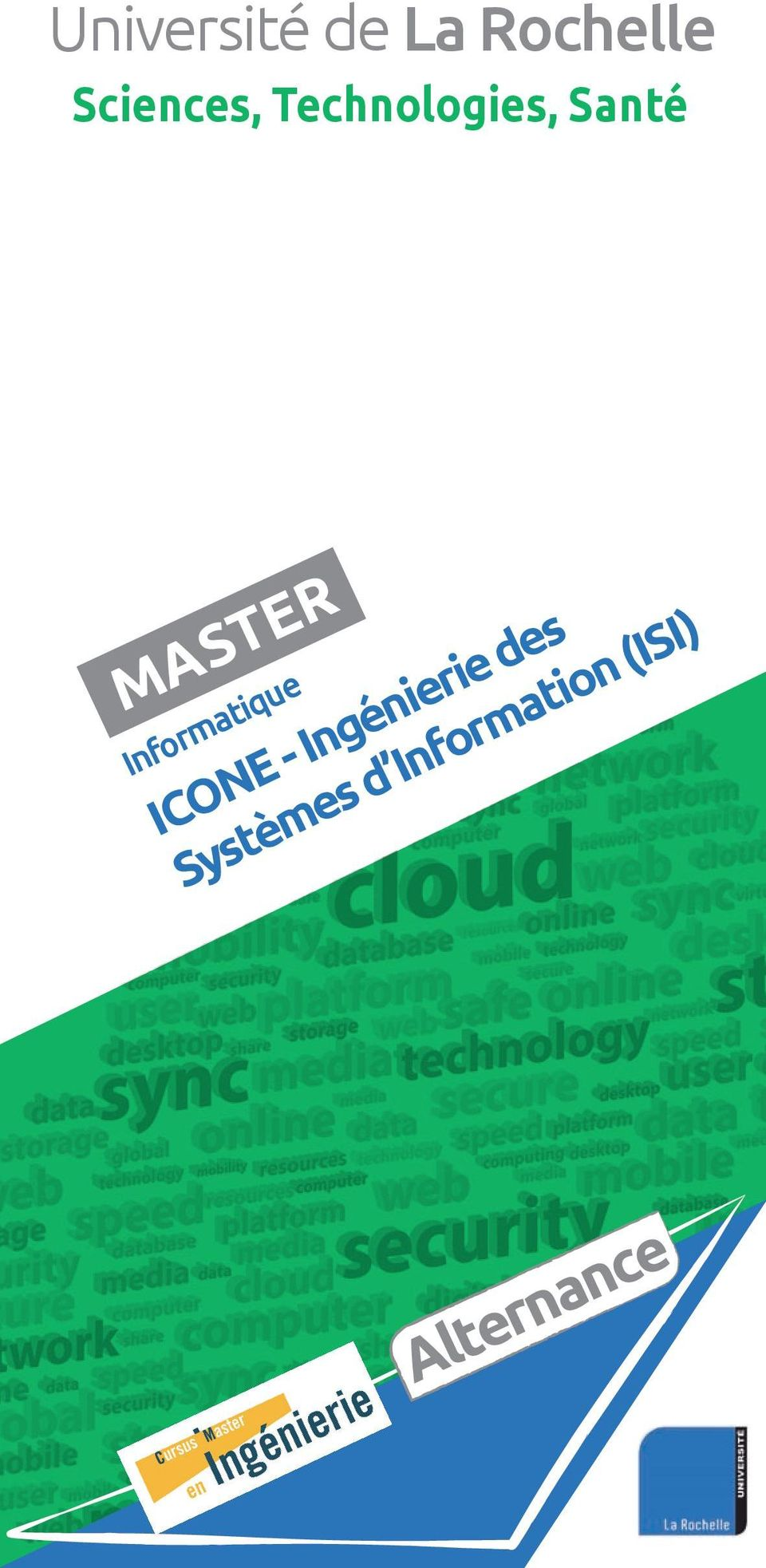 MASTER Informatique ICONE -