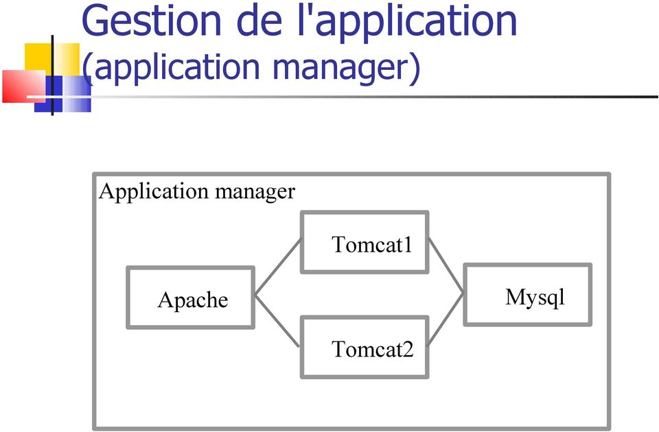(application manager)