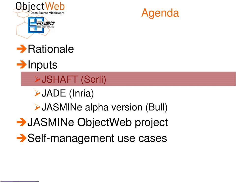 alpha version (Bull) JASMINe