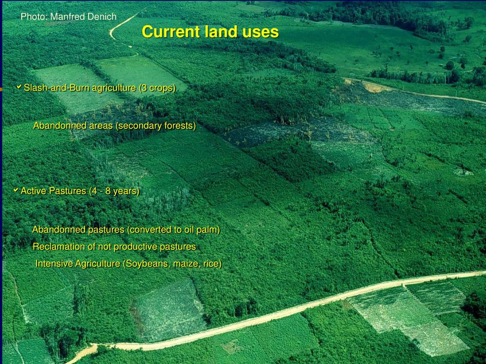 years) Abandonned pastures (converted to oil palm) Reclamation of