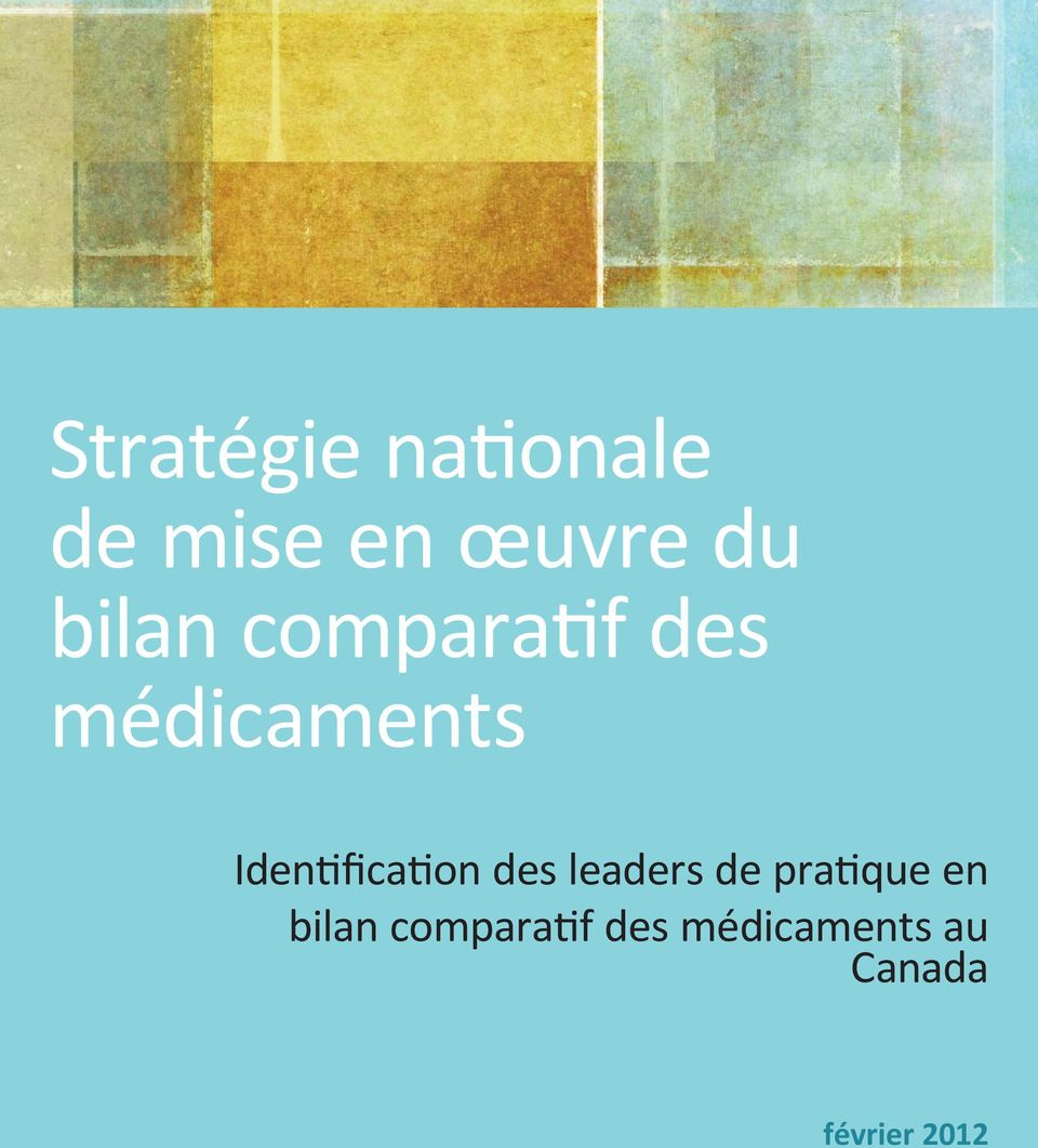 Identification des leaders de pratique en