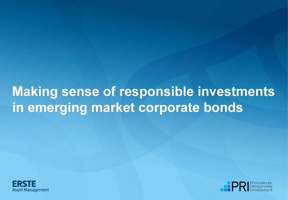 info) Making sense of responsible investments in emerging market