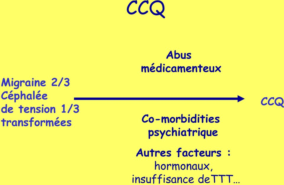 Co-morbidities psychiatrique Autres