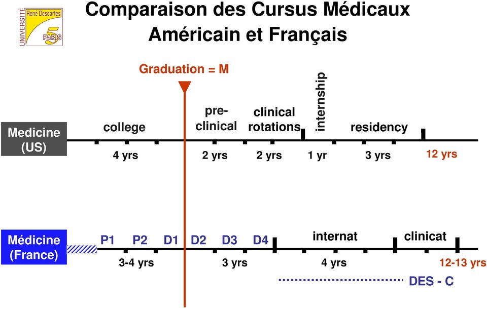 yrs internship 1 yr residency 3 yrs 12 yrs Médicine (France) P1 P2