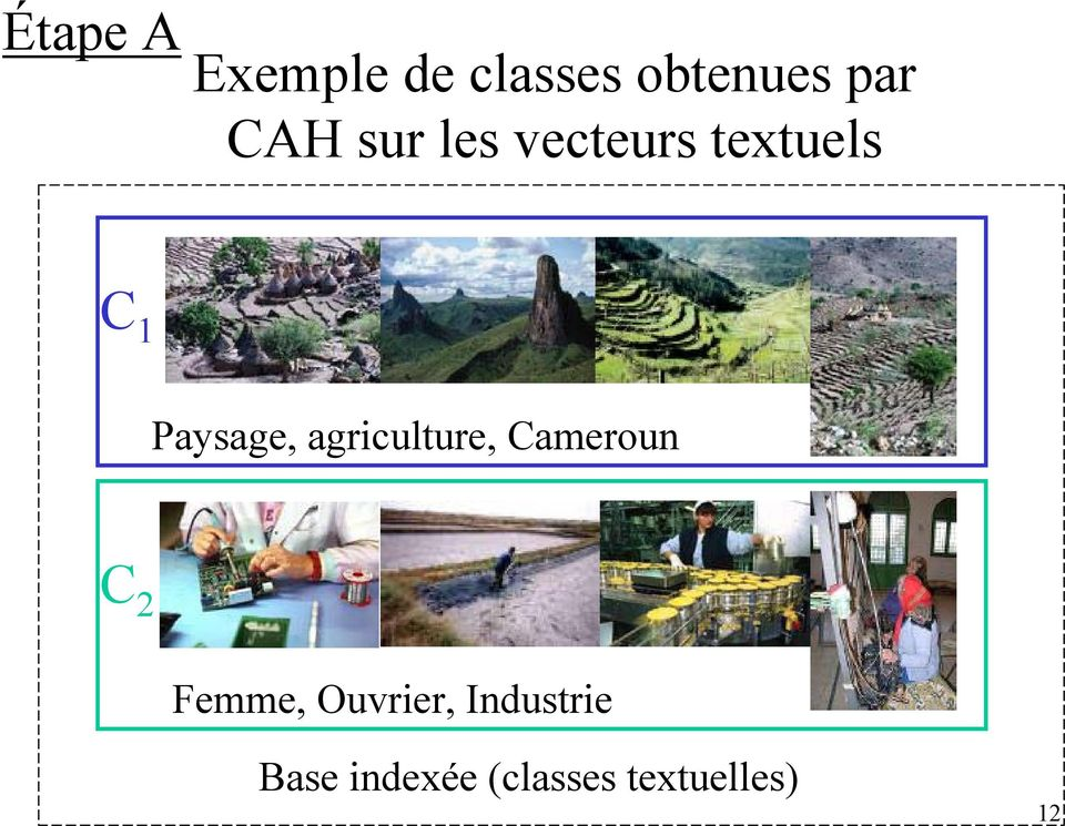 agriculture, Cameroun C 2 Femme, Ouvrier,