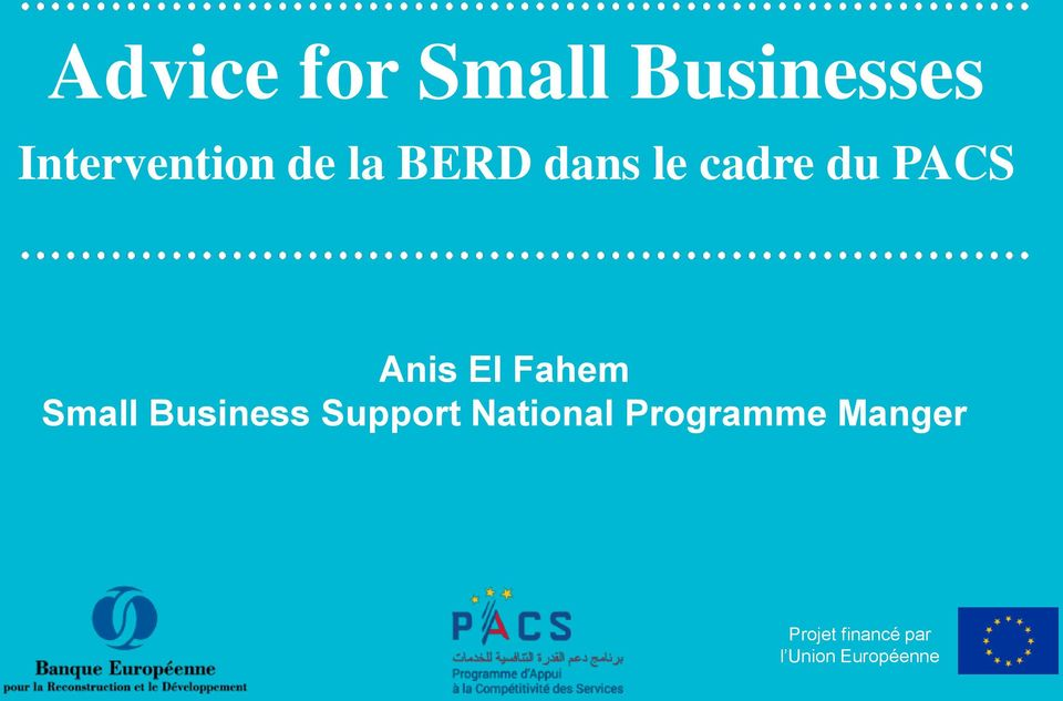 Small Business Support National Programme