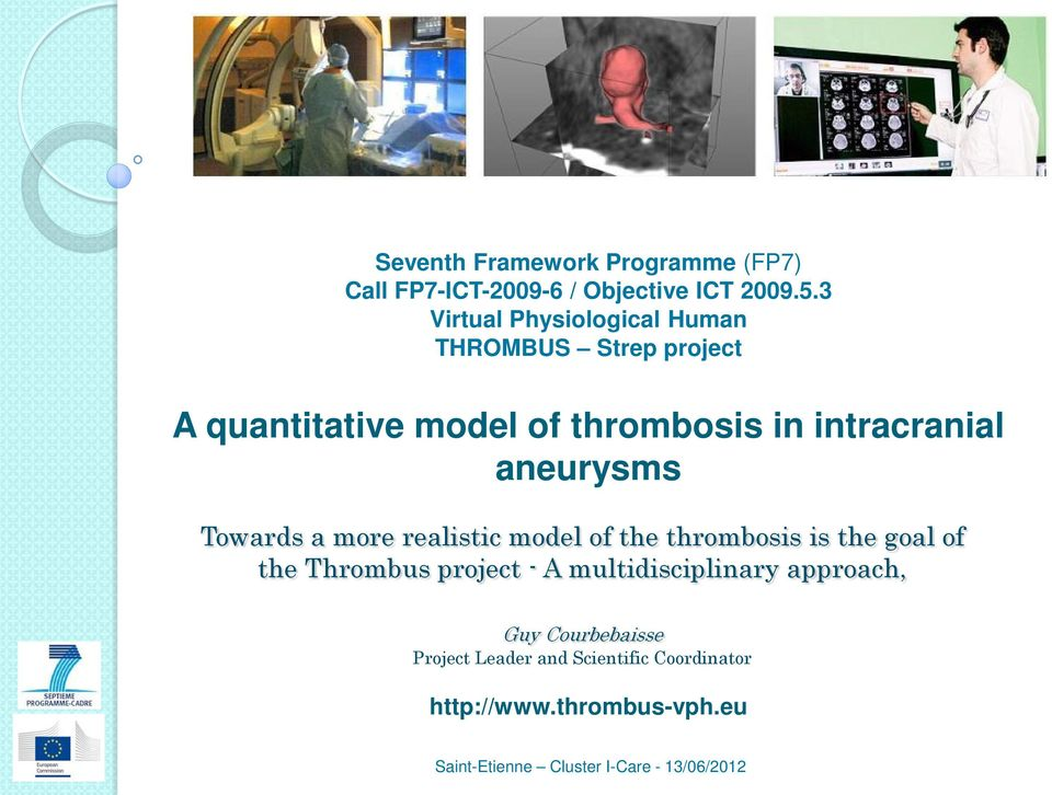 intracranial aneurysms Towards a more realistic model of the thrombosis is the goal of the