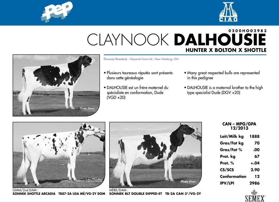 Many great respected bulls are represented in this pedigree Dalhousie is a maternal brother to the high type specialist Dude (DGV +20) CAN MPG/GPA 12/2013