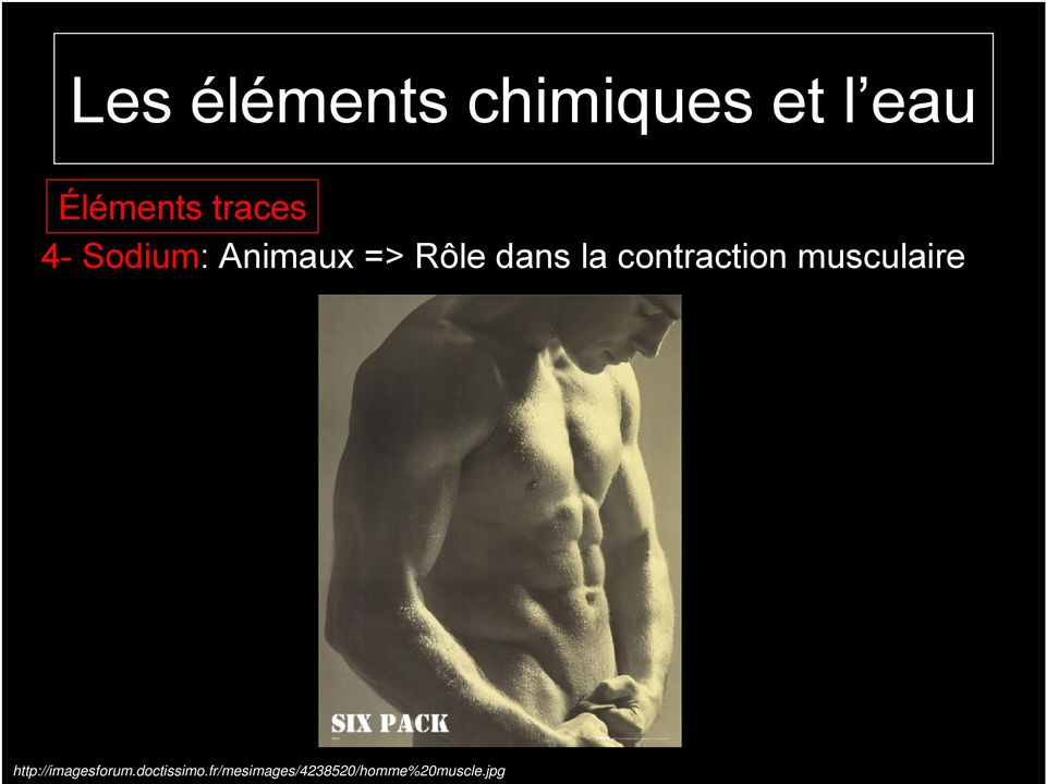 contraction musculaire http://imagesforum.