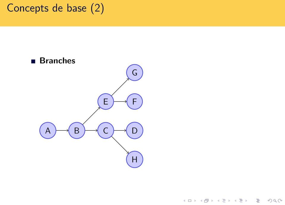 Branches G