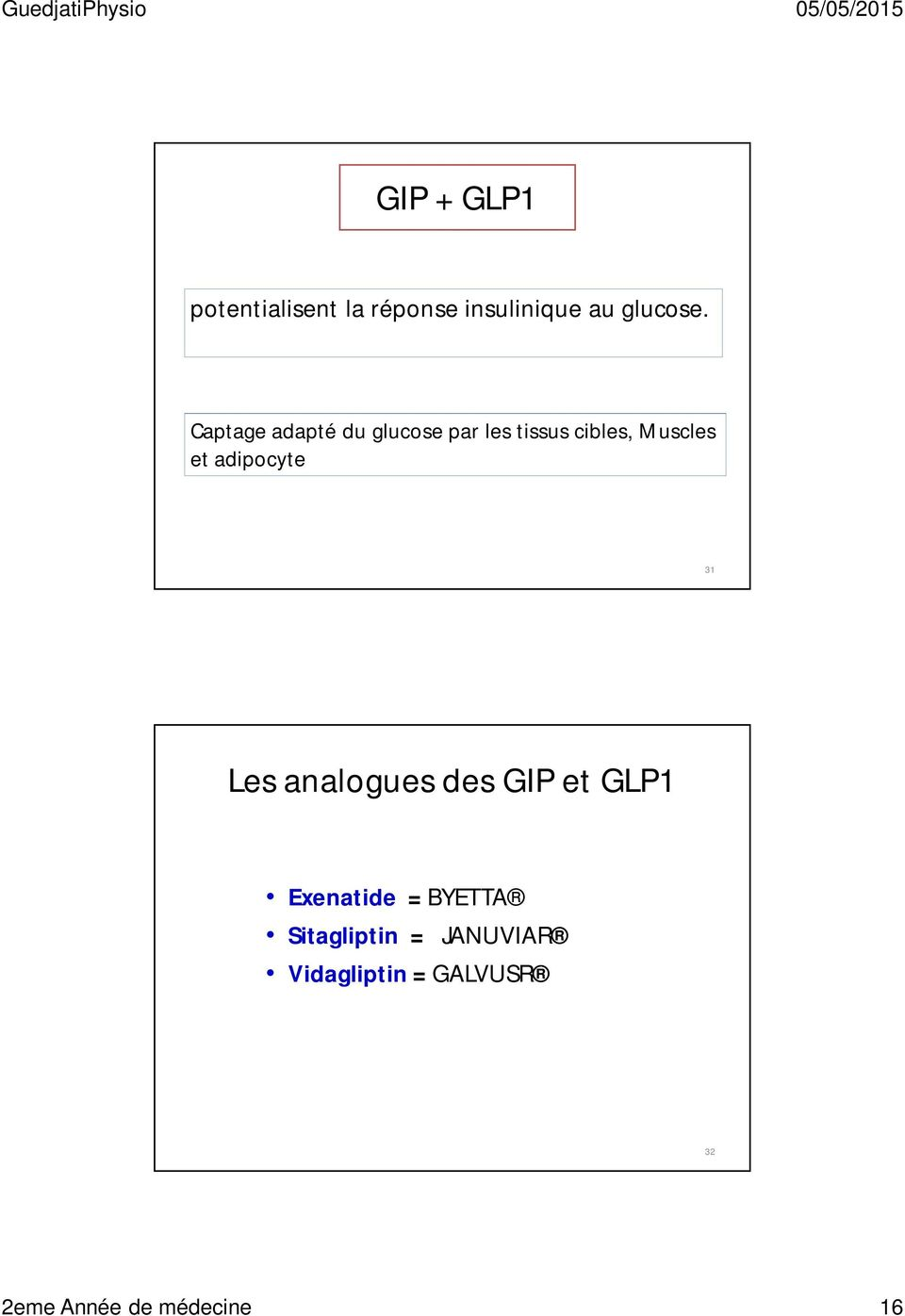 adipocyte 31 Les analogues des GIP et GLP1 Exenatide = BYETTA