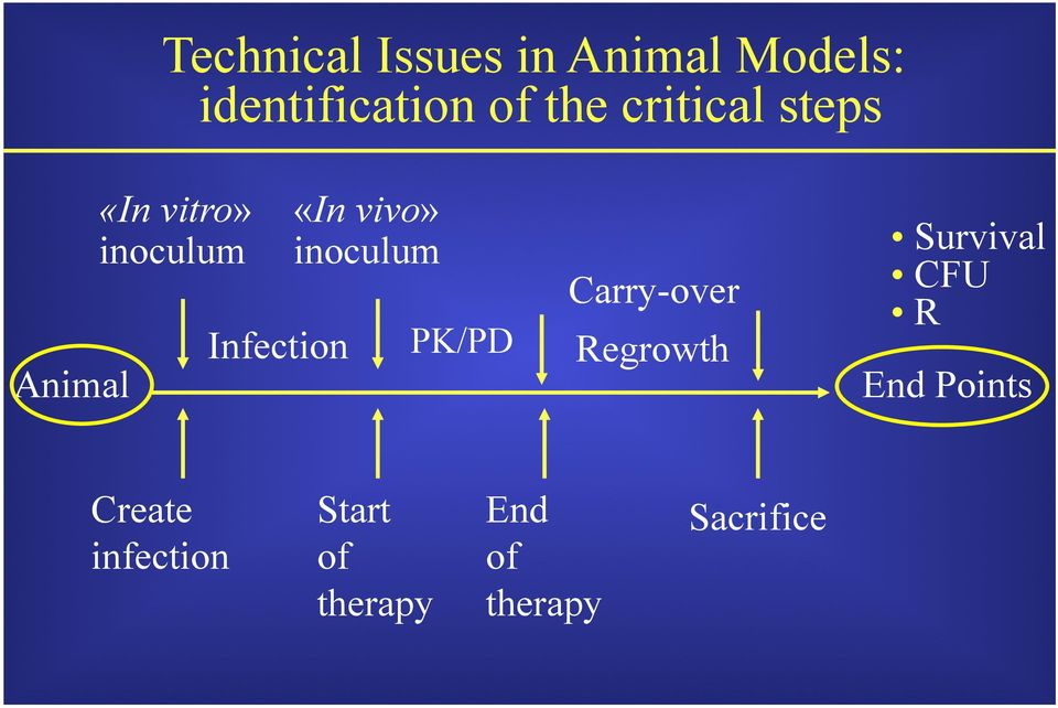 inoculum Carry-over Infection PK/PD Regrowth Survival CFU R