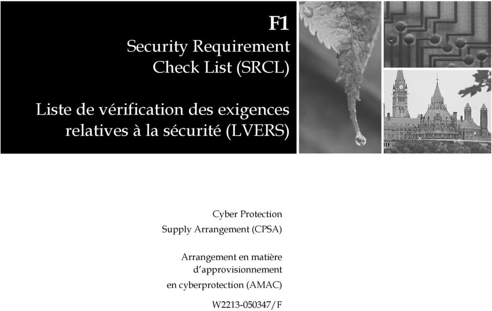 (LVERS) Cyber Protection Supply Arrangement (CPSA)
