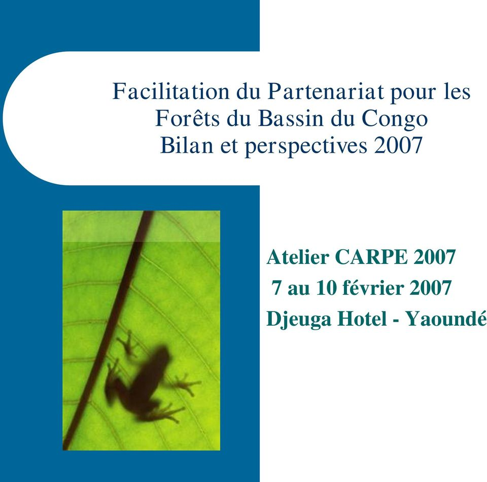 perspectives 2007 Atelier CARPE 2007
