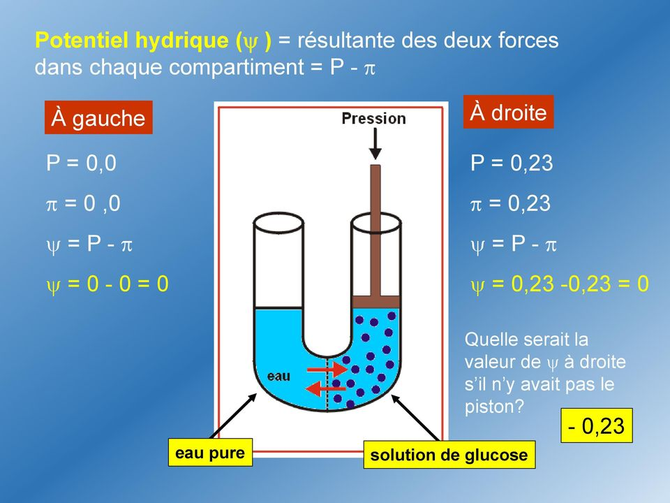 P = 0,23 = 0,23 = P - = 0,23-0,23 = 0 eau pure solution de glucose