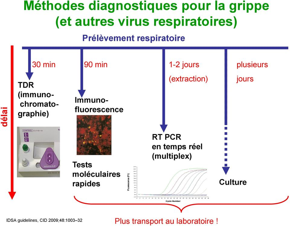 Immunofluorescence (extraction) plusieurs jours Tests moléculaires rapides RT PCR