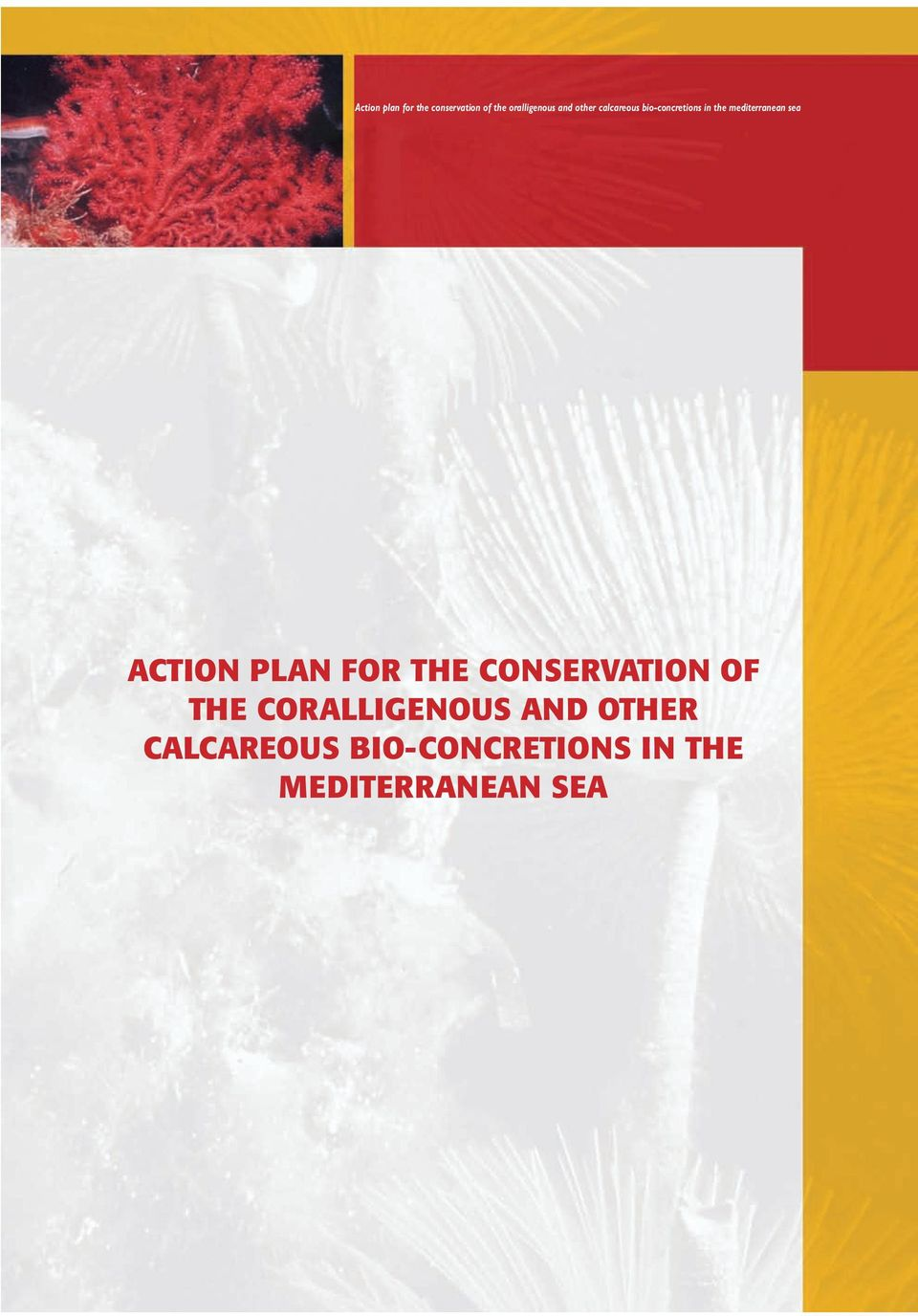 ACTION PLAN FOR THE CONSERVATION OF THE CORALLIGENOUS AND
