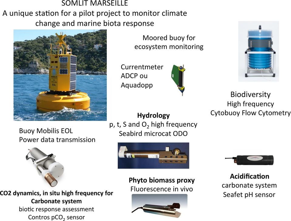 microcat ODO Biodiversity High frequency Cytobuoy Flow Cytometry CO2 dynamics, in situ high frequency for Carbonate system bio8c