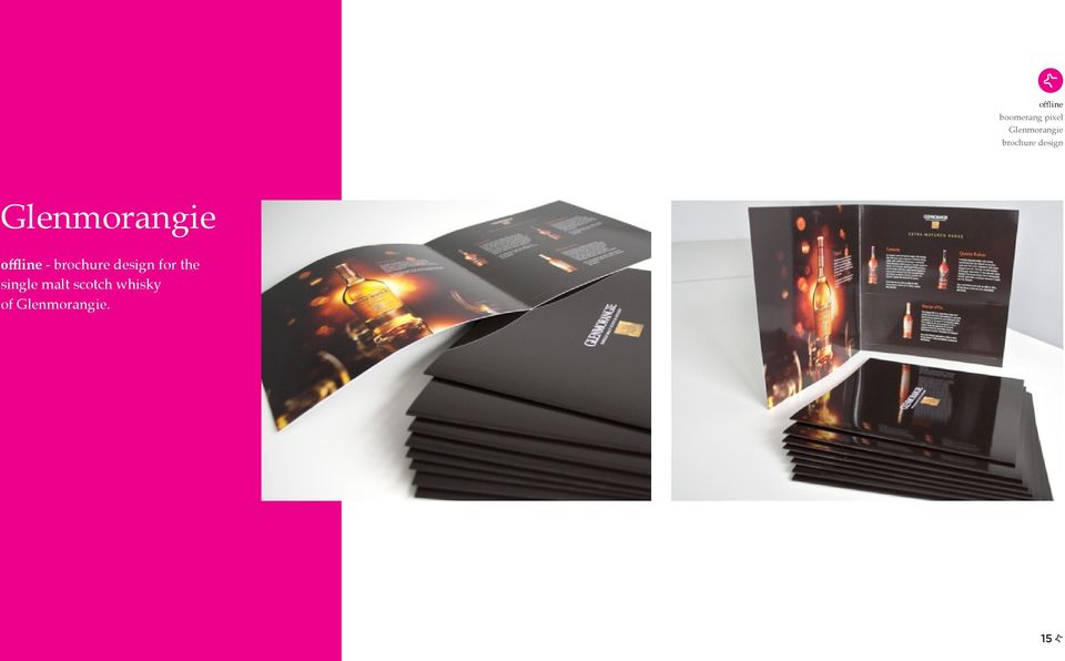 - brochure design for the single
