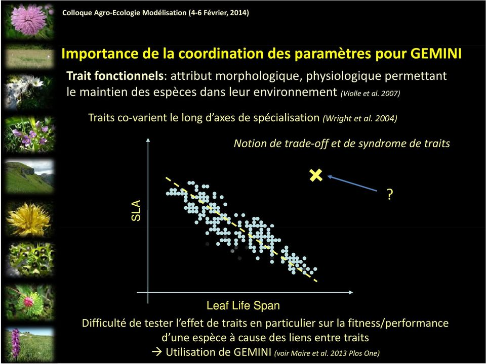 2007) Traits co varient le long d axes de spécialisation (Wright et al. 2004) Notion de trade off et de syndrome de traits SLA?