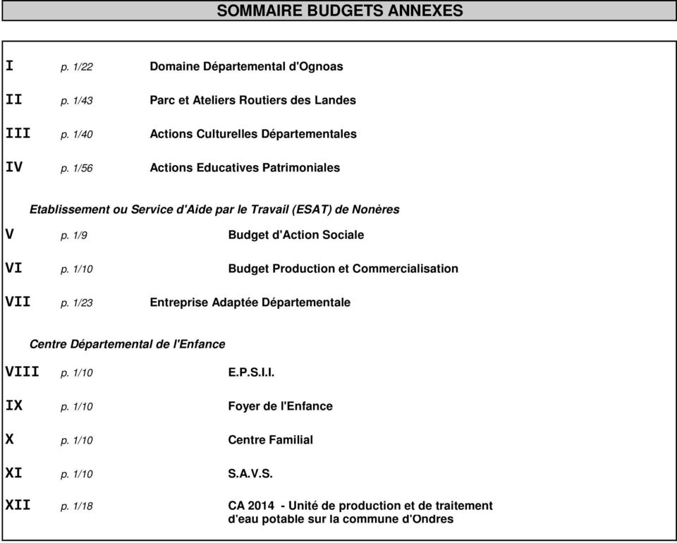 1/9 Budget d'action Sociale VI p. 1/10 Budget Production et Commercialisation VII p.