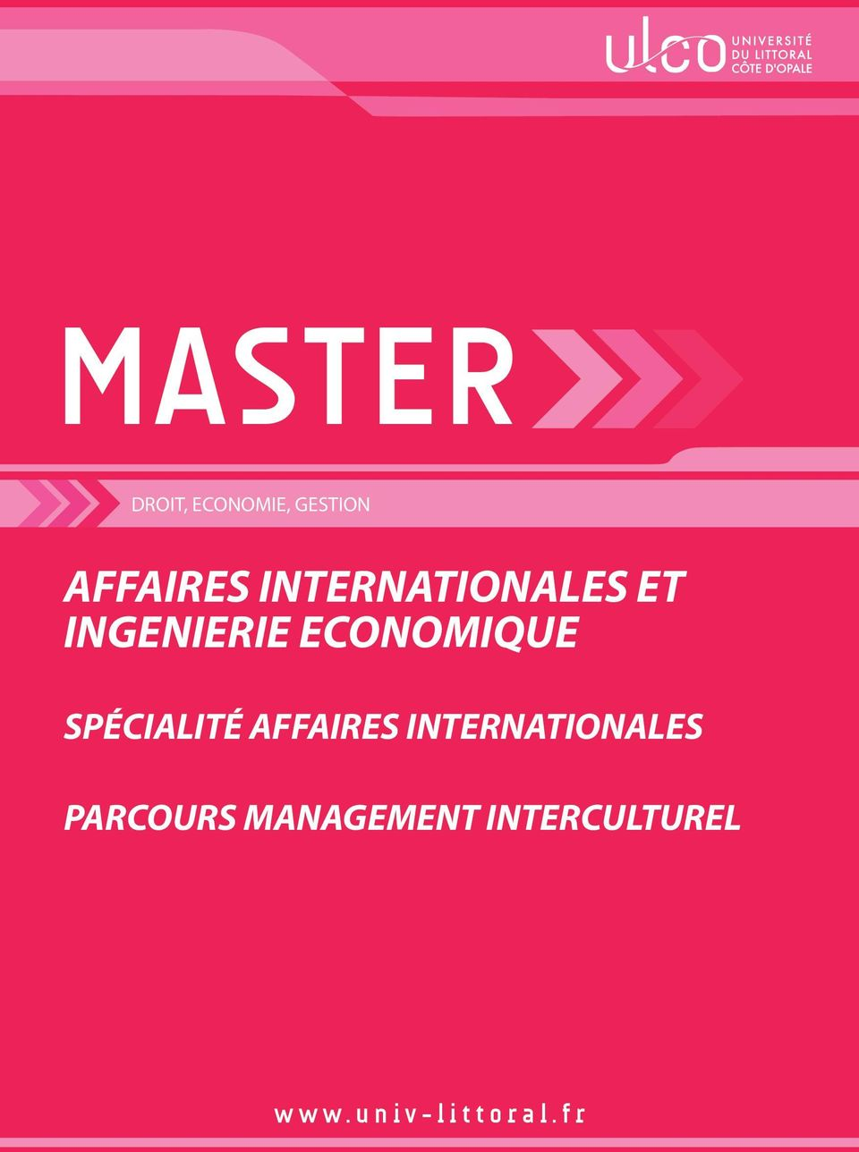 SPÉCIALITÉ AFFAIRES INTERNATIONALES