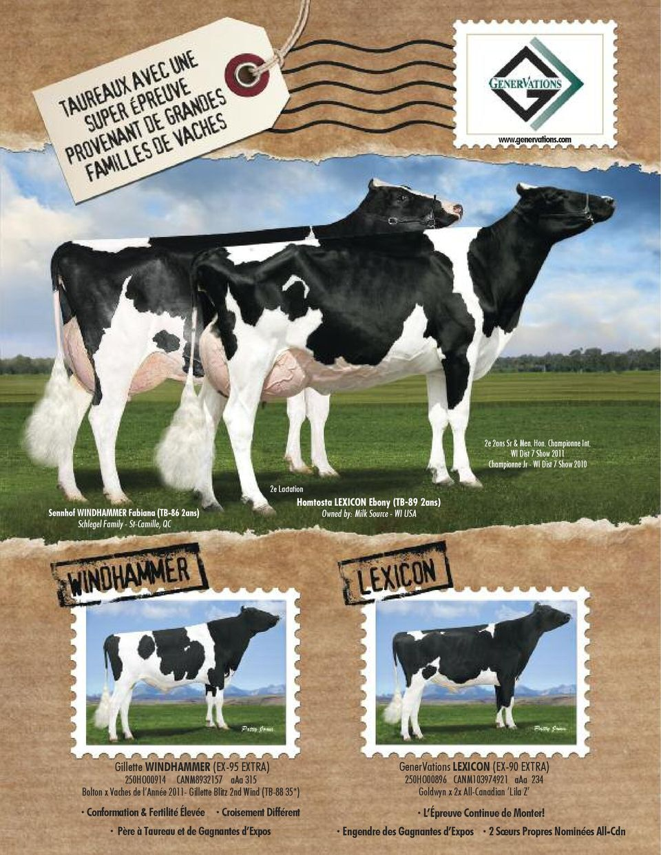 (TB-89 2as) Owed by: Milk Source - WI USA Gillette WINDHAMMER (EX-95 EXTRA) 250HO00914 CANM8932157 aaa 315 Bolto x Vaches de l Aée 2011- Gillette Blitz 2d Wid