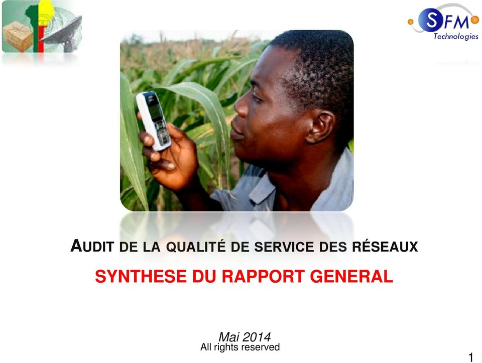 SYNTHESE DU RAPPORT