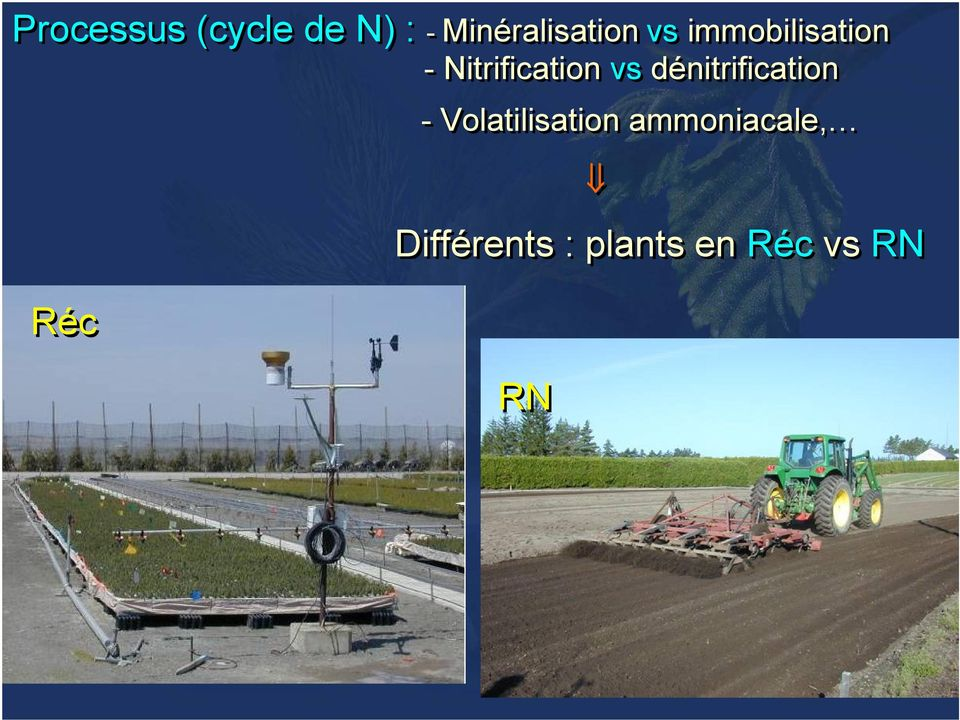 Nitrification vs dénitrification -