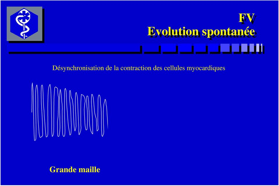 contraction des cellules