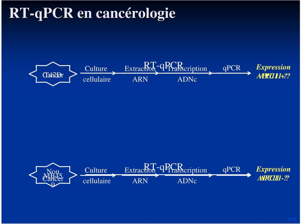 APC11 + Non Cancer MB45 9 Culture cellulaire