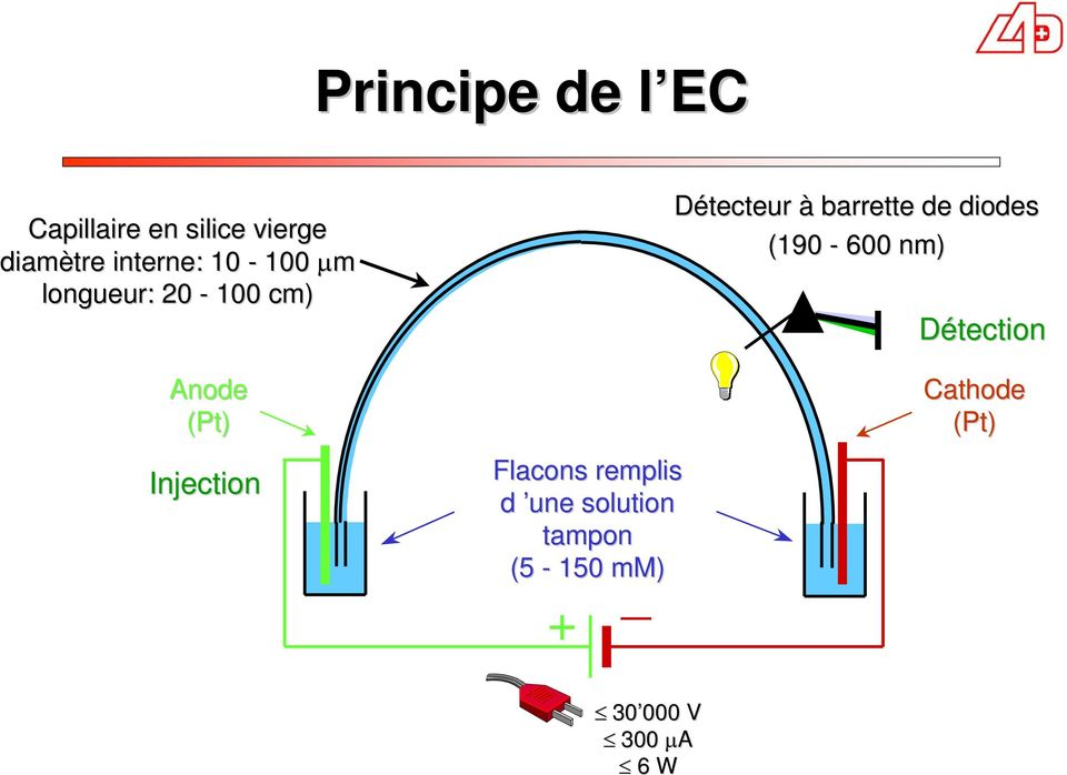 (190 600 nm) Détection Anode (Pt) Injection Flacons remplis d