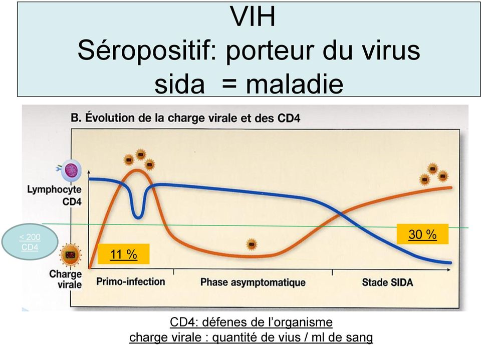 CD4: défenes de l organisme charge
