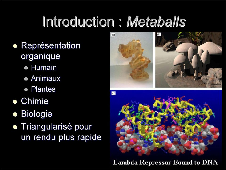 Animaux Plantes Chimie Biologie