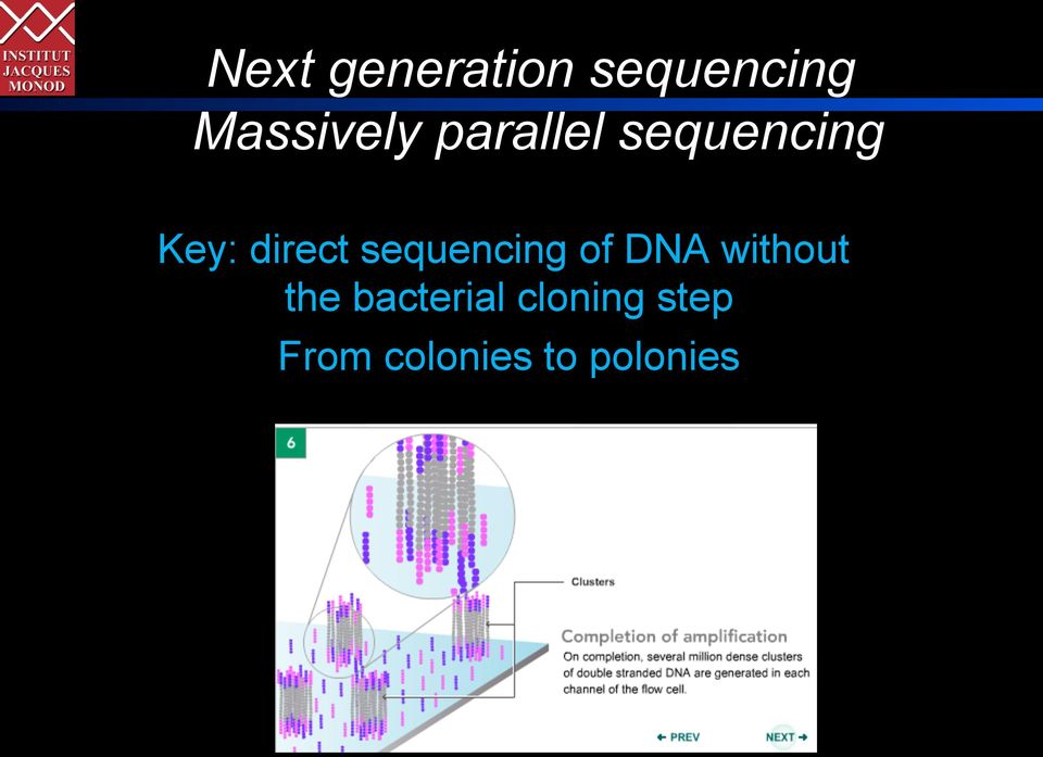 sequencing of DNA without the
