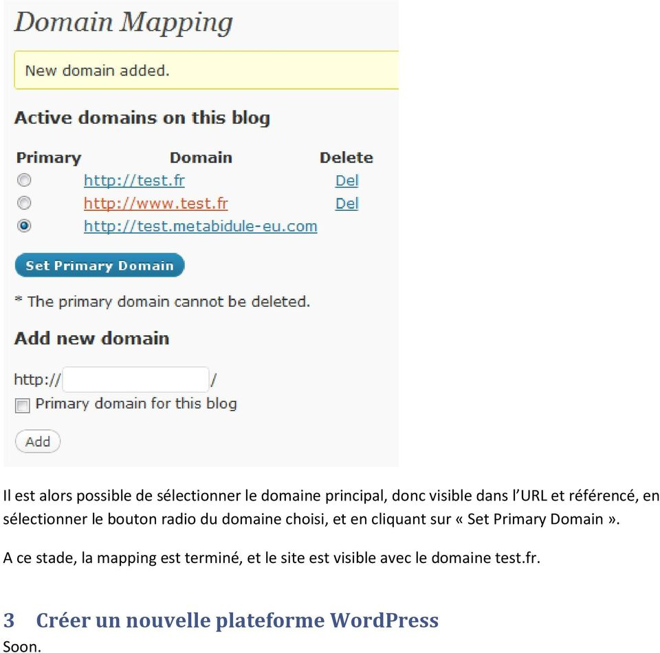 cliquant sur «Set Primary Domain».