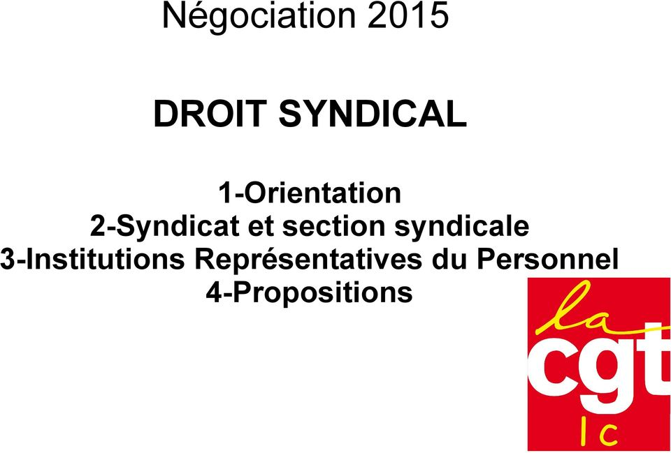 section syndicale 3-Institutions