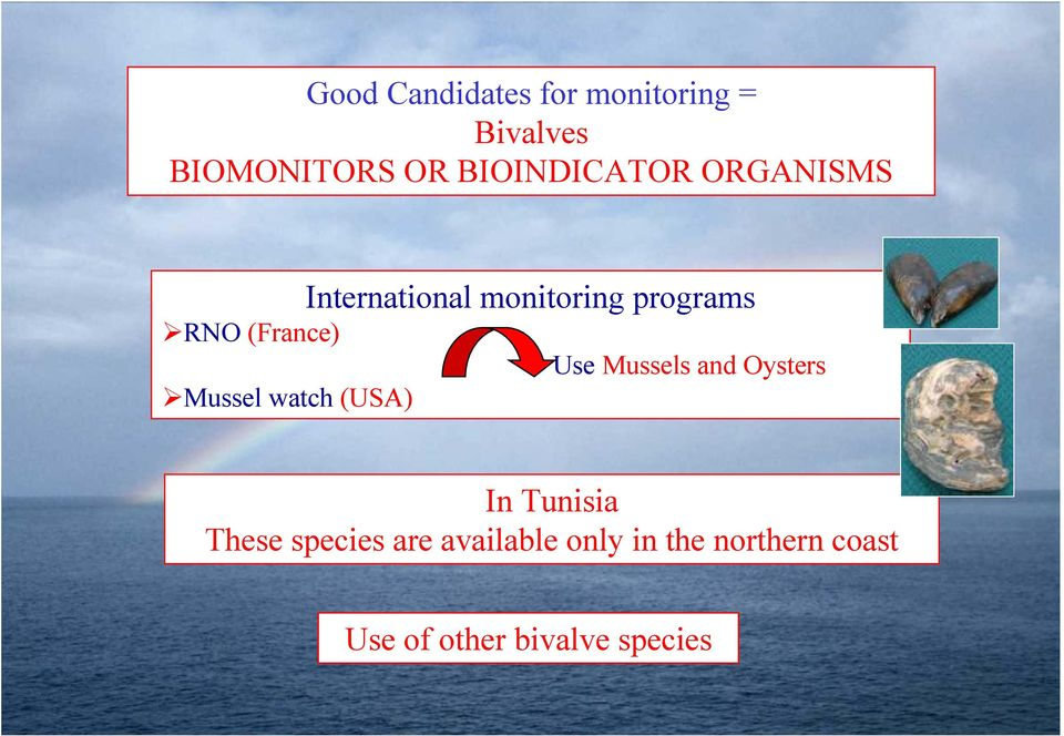 (France) Use Mussels and Oysters Mussel watch (USA) In Tunisia