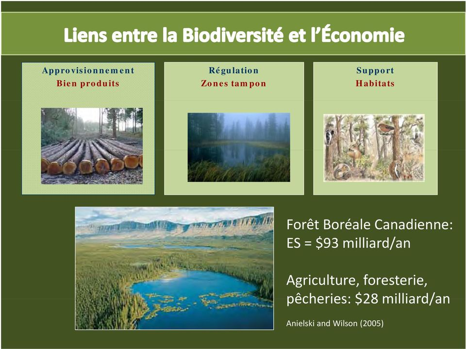 ES = $93 milliard/an Agriculture, foresterie,