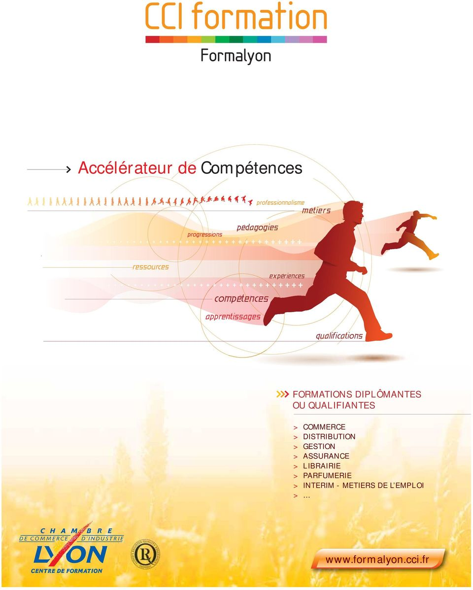 DIPLÔMANTES OU QUALIFIANTES > COMMERCE > DISTRIBUTION > GESTION > ASSURANCE >