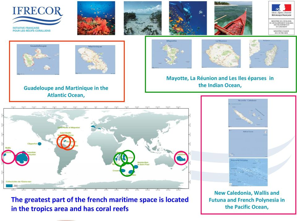 french maritime space is located in the tropics area and has coral