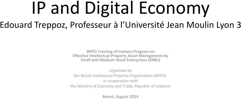 Medium-Sized Enterprises (SMEs) organized by the World Intellectual Property Organization