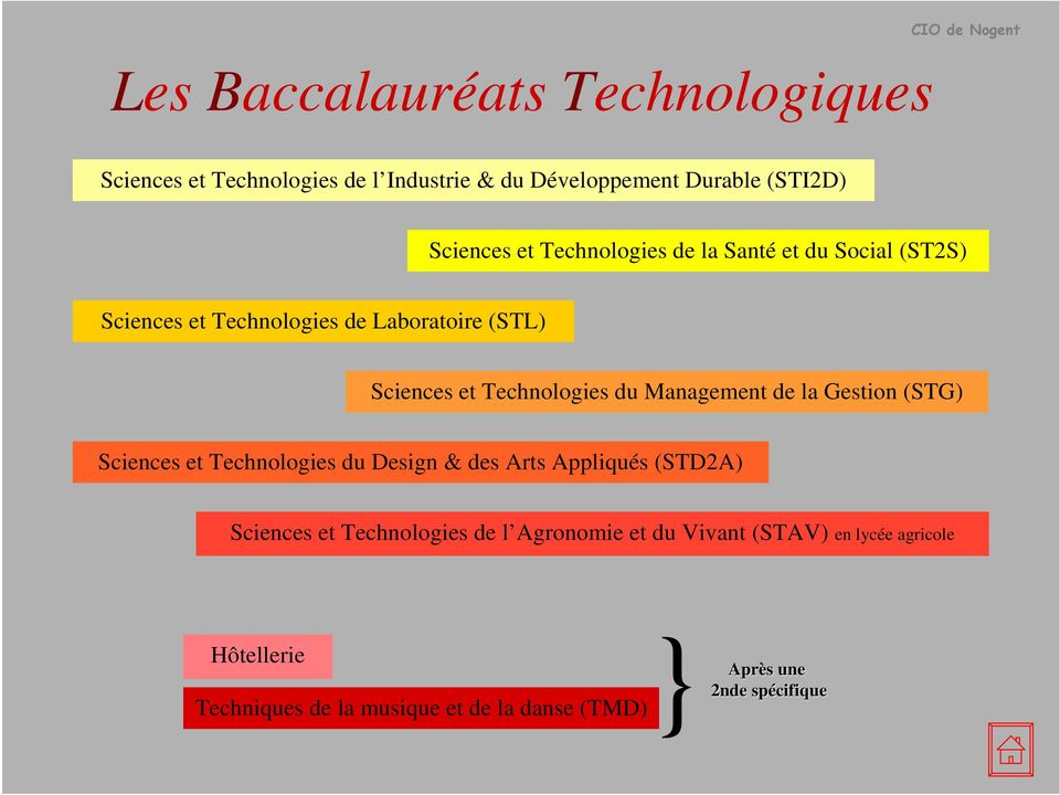 Management de la Gestion (STG) Sciences et Technologies du Design & des Arts Appliqués (STD2A) Sciences et Technologies de l