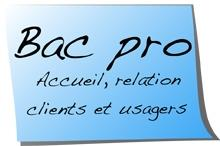 Baccalauréat Professionnel Accueil Relation