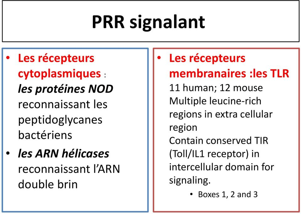 membranaires :les TLR 11 human; 12 mouse Multiple leucine-rich regions in extra cellular